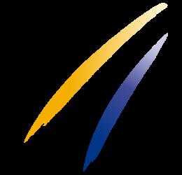 FIS - logo