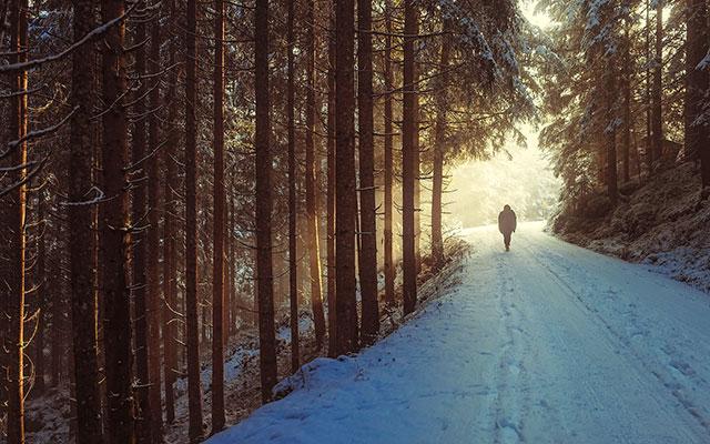 Zimski pohod