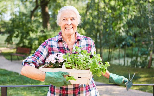 Vrtnarjenje za bister um