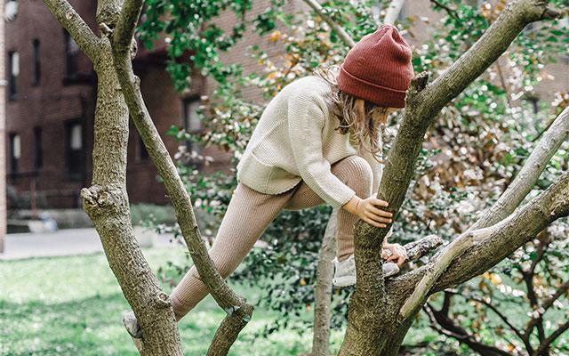 Otrok pleza po drevesu